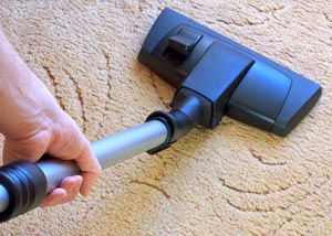 A carpet cleaning professional working in Southbury
